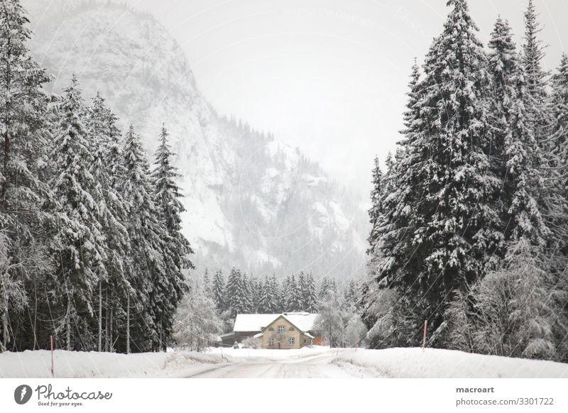 winterlandschaft in Norwegen Schneelandschaft Skandinavien Norweger Berge u. Gebirge Landschaft Haus Natur Himmel Winter Dorf Wald landschaftidyll Aussehen Gras