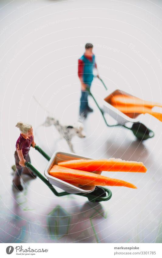 Bio Bauernhof Spielzeug Gemüse Bioprodukte Vegetarische Ernährung Diät Freizeit & Hobby Spielen Kinderspiel Haus Kinderzimmer Kindererziehung Bildung