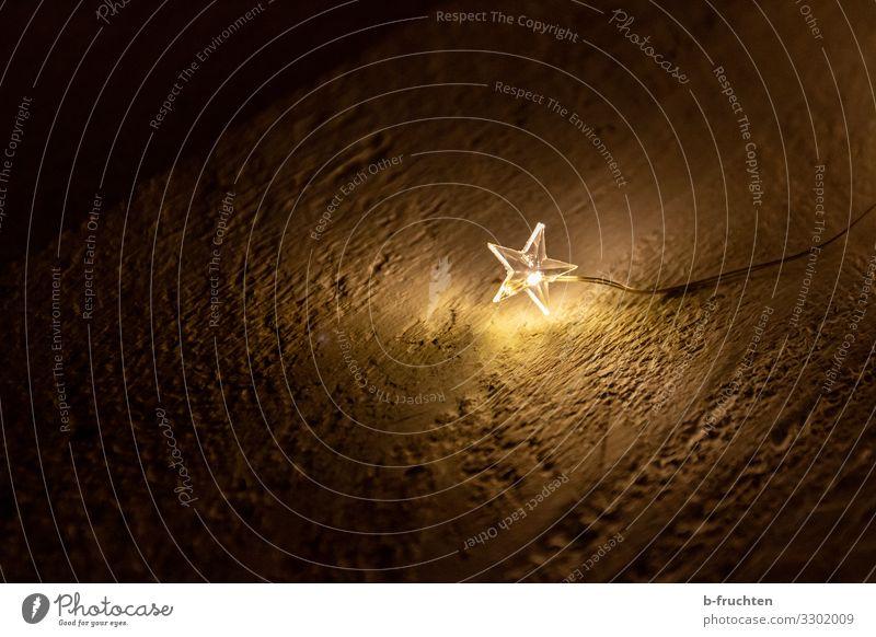 Ein Stern leuchtet mir Dekoration & Verzierung Zeichen beobachten leuchten ästhetisch Zusammensein Glück Lichterkette Lichtblick Stern (Symbol) Leuchtdiode