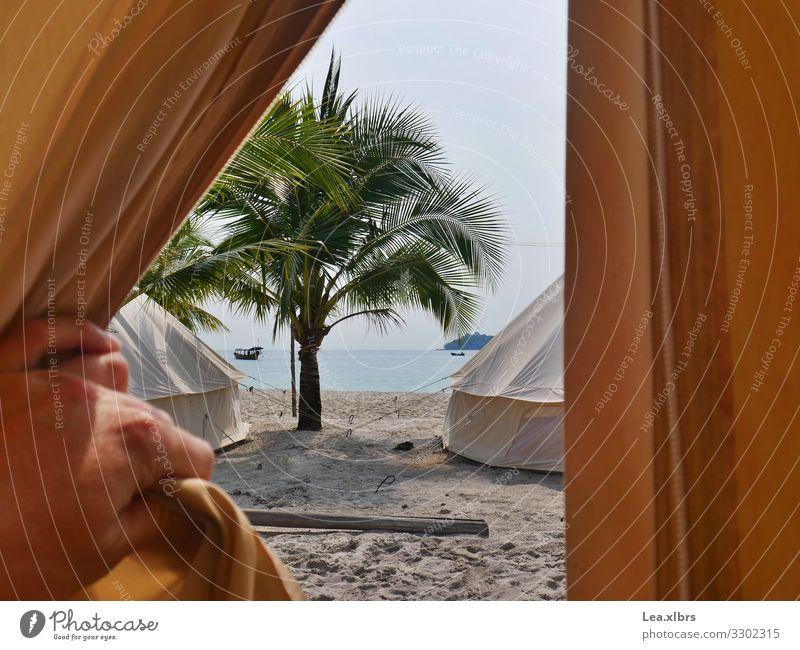 Blick ins Paradies Freizeit & Hobby Reisefotografie Tipi Sand Luft Wasser Schönes Wetter Palme Meer Indischer Ozean Insel frei frisch natürlich einfach Freiheit