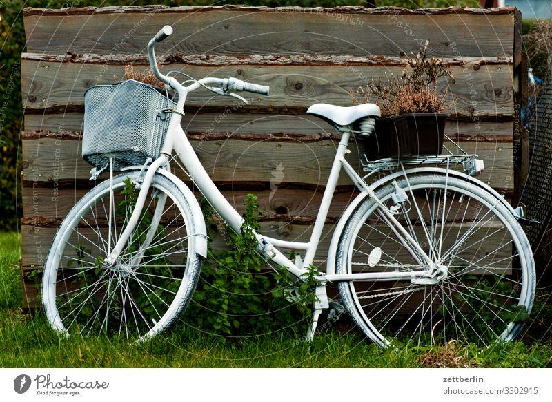 Weißes Fahrrad weiß Wand Garten Textfreiraum Holzbrett Geister u. Gespenster Rad Parkplatz parken Scheune Schuppen Gartenhaus Lagerschuppen Stellplatz