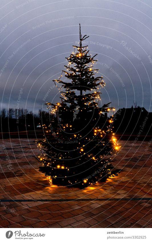 Öffentlicher Weihnachtsbaum Dorf Insel Küste Landschaft Mecklenburg-Vorpommern Nebensaison Ostsee Rügen Winter Weihnachten & Advent Weihnachtsbaumspitze Markt