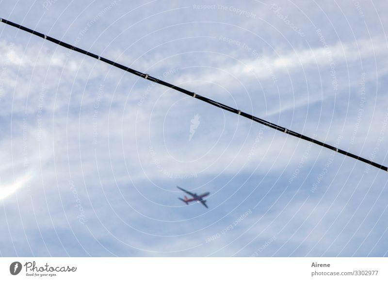 viel Betrieb am Himmel Wolken Schönes Wetter fliegen hängen blau weiß Luft luftig Luftverkehr Flugzeug Stahlkabel gespannt quer Seil Ferne Umweltsünder