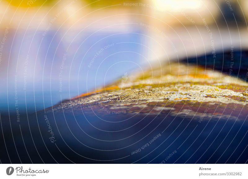 Sonnenfleck an der Isar Flussufer Menschenleer Mauer blau gelb gold Frühlingsgefühle Vorfreude Moos hell-blau strahlend Geländer Naturwuchs Flechten erleuchten
