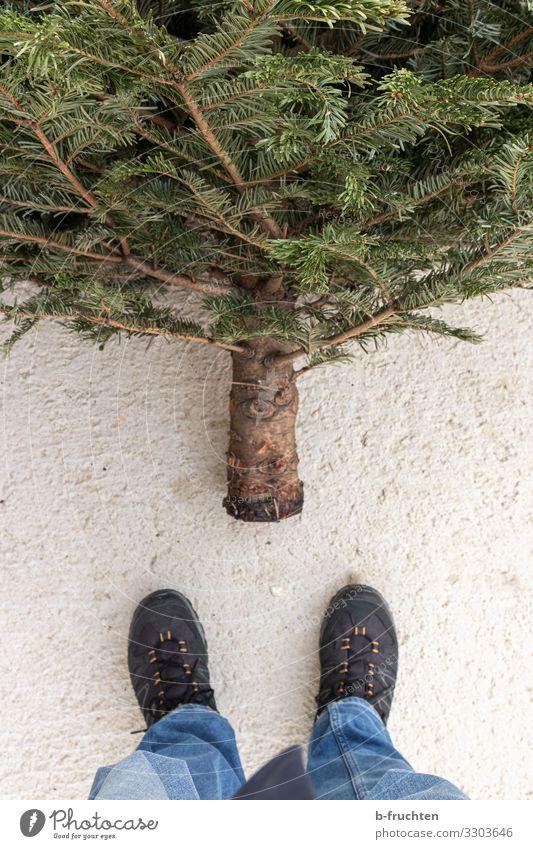 Ende der Weihnachtszeit Mensch Weihnachten & Advent Baum Religion & Glaube Traurigkeit Business Fuß Freizeit & Hobby Schuhe Zukunft warten beobachten Beton