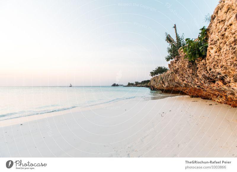 Strand auf Sansibar Farbfoto Außenaufnahme Afrika Wasser Sommer Erholung Abendstimmung Ferien & Urlaub & Reisen Natur Sand Meer Tansania Felsen Horizont Schiff