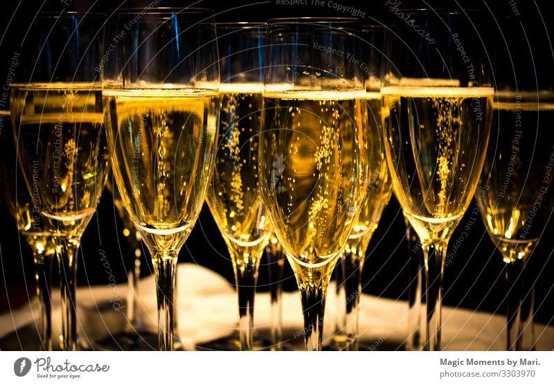 Der Hochzeits-Champagner Getränk Erfrischungsgetränk glänzend Glück Liebe trinken Farbfoto