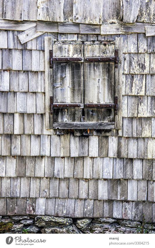 Sturmgeschützt Hütte Gebäude Mauer Wand Fassade Fenster Fensterladen Dachziegel Schindelwand Holz alt kaputt natürlich träumen Traurigkeit Trauer Schmerz