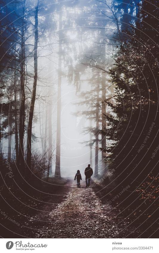 Spaziergang Vater und Sohn im nebligen Wald Ausflug Abenteuer Ferne Freiheit Mensch maskulin Junge Erwachsene Familie & Verwandtschaft Kindheit 2 8-13 Jahre