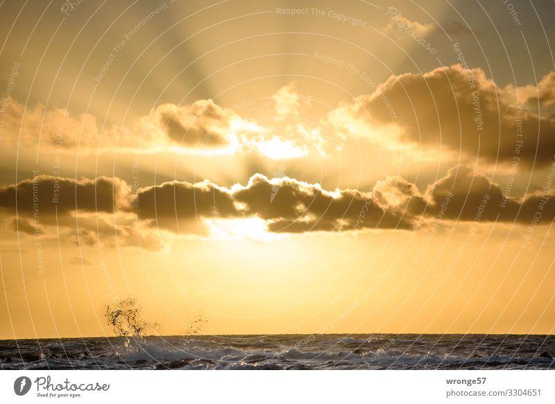 Abendsonne mit Wellenspritzer links Natur Luft Wasser Himmel Sonne Sonnenaufgang Sonnenuntergang Sonnenlicht Herbst Schönes Wetter Ostsee maritim mehrfarbig