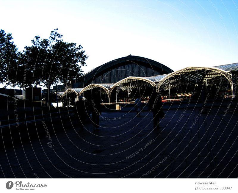 Hbf Köln Dach Kuppeldach Gebäude dunkel Architektur Bahnhof Bienenwaben Kontrast Mensch Himmel Blauübergang Gitterstruktur