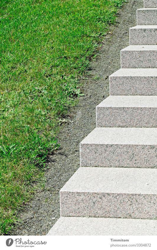 Aufstieg Umwelt Schönes Wetter Gras Park Dänemark Stein ästhetisch Sauberkeit grau grün weiß Gefühle Ordnungsliebe Zugang Treppe Treppenstufen Farbfoto