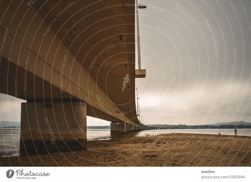 eine der sieben.... Sand Wolken Horizont Sommer Küste Strand Bucht Meer Verkehrswege Straße Brücke dunkel braun grau Spaziergang Hund Farbfoto Gedeckte Farben