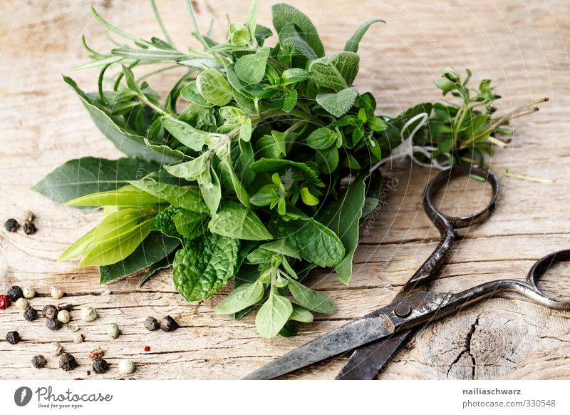 Kräuterbund grün Holz Essen natürlich Metall braun Lebensmittel frisch Ernährung einfach genießen Kräuter & Gewürze lecker Duft Bioprodukte