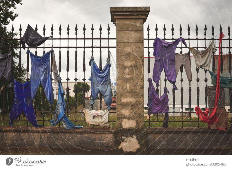 Wäsche blau Stadt grün weiß rot Wand Garten Mauer braun Aktion Bekleidung violett Stoff Zaun Hose Hemd