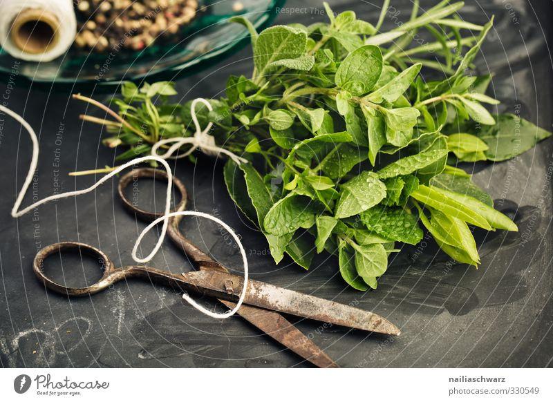 Kräuterbund Lebensmittel Kräuter & Gewürze Rosmarin Oregano Lorbeer Minze Thymian Pfeffer Ernährung Bioprodukte Vegetarische Ernährung Italienische Küche Schere
