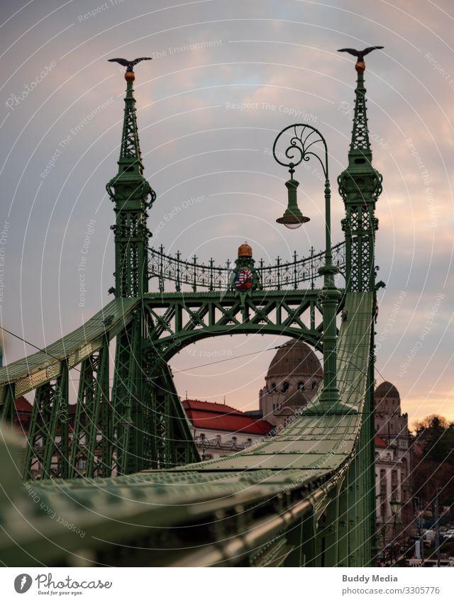 Freiheitsbrücke in Budapest Himmel alt blau Stadt grün rot Wolken schwarz Herbst gelb braun Metall elegant ästhetisch Brücke Wahrzeichen