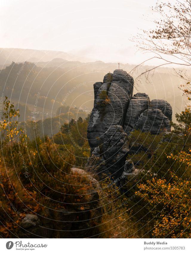 Bastei, Sächsische Schweiz, Lohmen Natur Landschaft Himmel Sonnenaufgang Sonnenuntergang Herbst Schönes Wetter Nebel Baum Gras Sträucher Park Wald Hügel Felsen