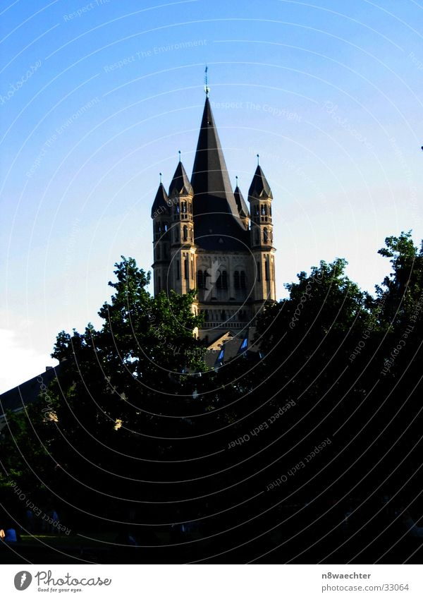 St. Martin Köln Baum grün ruhig Gotteshäuser Religion & Glaube Turm Altstadt Himmel blau Abend
