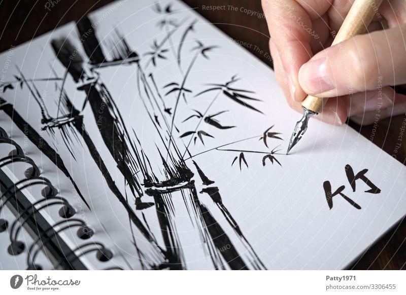 Detailaufnahme ener Hand, die mit einer Zeichenfeder eine Tuschezeichnung eines Bambus in einem Skizzenbuch anfertigt 1 Mensch Kunst Künstler Maler Zeichnung