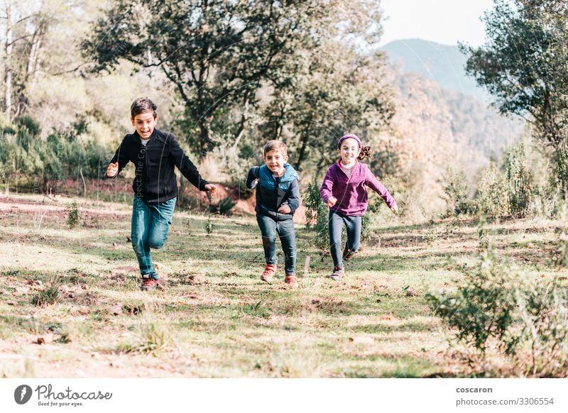 Drei süße Kinder laufen und werfen eine Wiese Lifestyle Freude Glück schön Freizeit & Hobby Spielen Ferien & Urlaub & Reisen Freiheit Sommer Sport Mensch