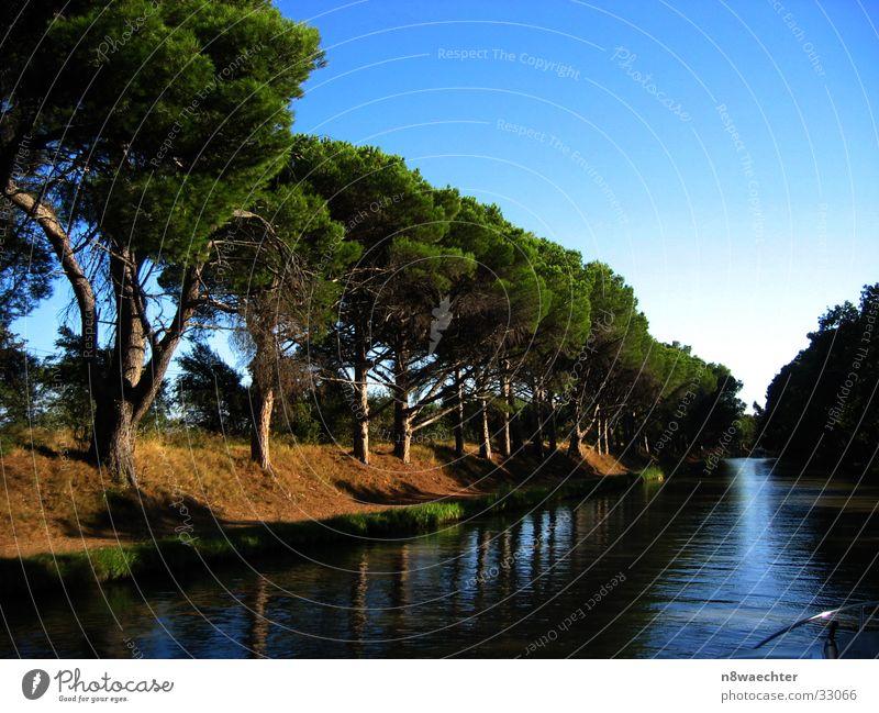 Ruhe auf dem Kanal Canal du Midi Frankreich Unendlichkeit ruhig Baum Baumreihe Nadelbaum Reflexion & Spiegelung Schifffahrt Wasser Himmel Abend Erholung