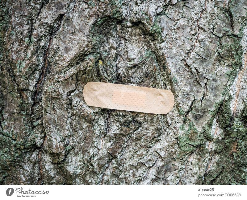 Pflaster am Baum - Konzept zur Heilung der Natur Gesundheitswesen Krankheit Medikament Band Umwelt Erde Globus natürlich grün Schutz Klebstoff Unterstützung