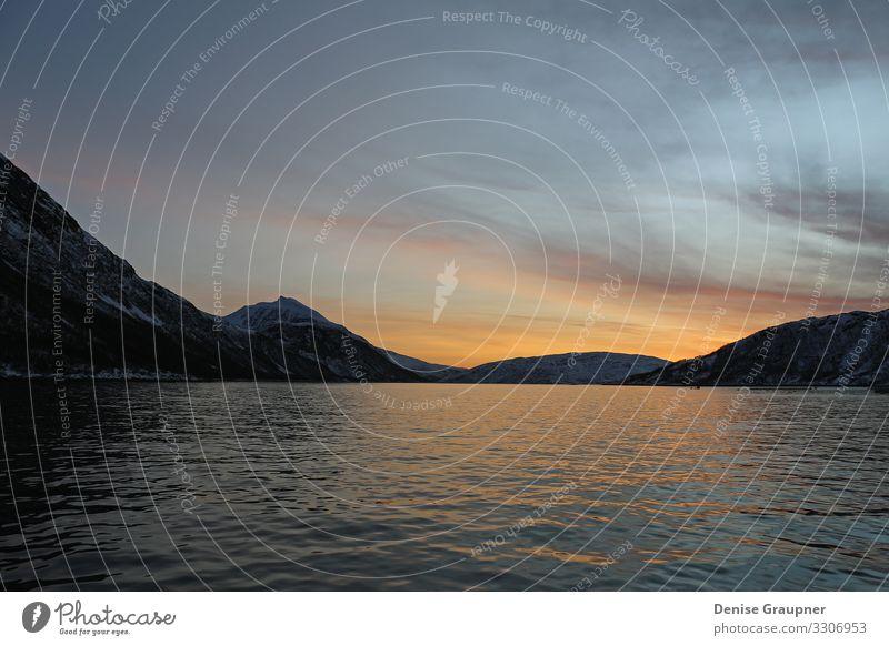 in the fjords of Norway at sunset Design Ferien & Urlaub & Reisen Sommer Umwelt Natur Landschaft Wasser Klima Klimawandel Wetter Schönes Wetter Fjord landscape