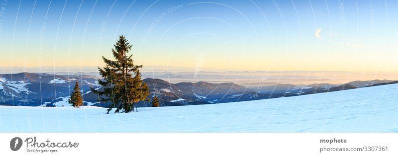 Abendstimmung am winterlichen Gipfel des Belchen, Sonnenuntergang, Blick Richtung Süden Berg Himmel Landschaft Natur abend abendhimmel abendlicht abendstimmung