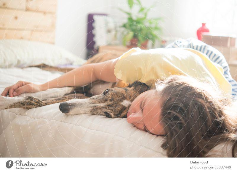 Frau und Hund im Schlafzimmer Lifestyle Freude Glück Erholung Haus Kind Mensch Erwachsene Mann Mutter Familie & Verwandtschaft Paar Kindheit Tier Haustier