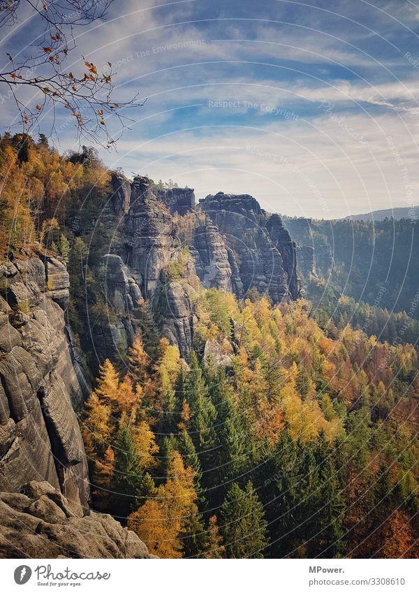 sächsische schweiz Umwelt Natur Landschaft Schönes Wetter Unendlichkeit Sächsische Schweiz Sandstein Felsen wandern Wald Herbst mehrfarbig Ausflug