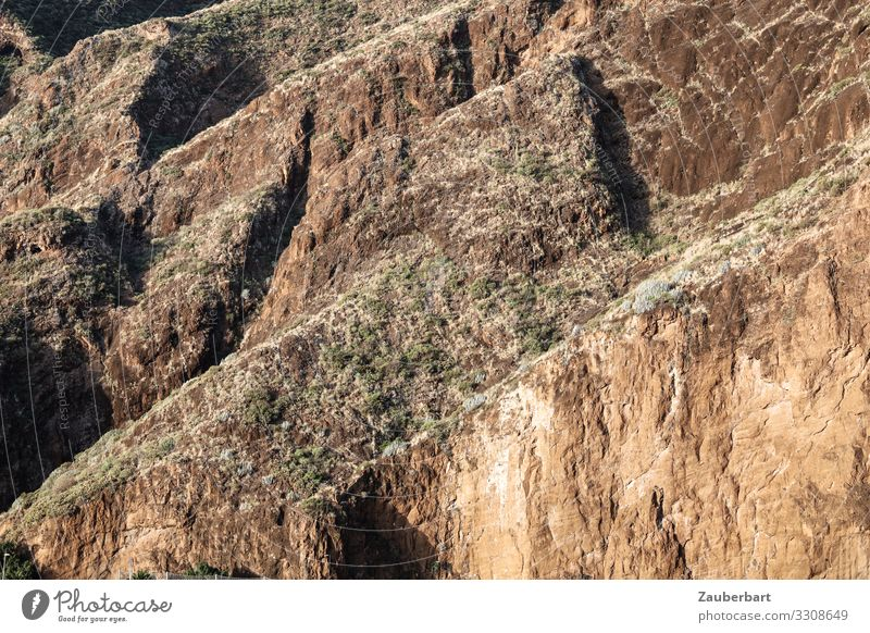 Aufwärts Ferien & Urlaub & Reisen Berge u. Gebirge Natur Landschaft Felsen La Palma Kanaren wandern braun selbstbewußt Respekt Umwelt steil Felswand Steilwand