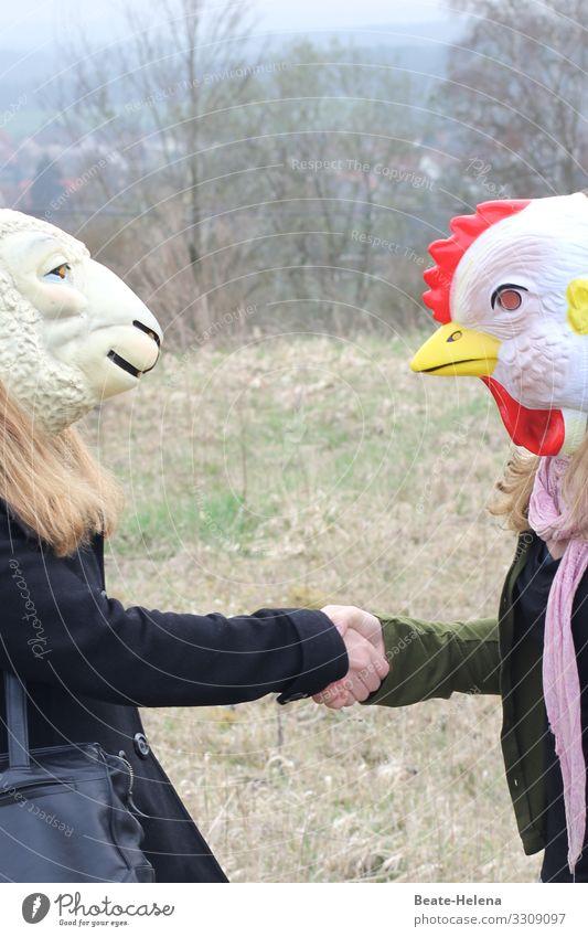 Ostern steht vor der Tür Frühling Tiere Begegnung Lamm Huhn Hahn Vorfreude Natur Feier Fest Tierwelt Zukunft Zuversicht