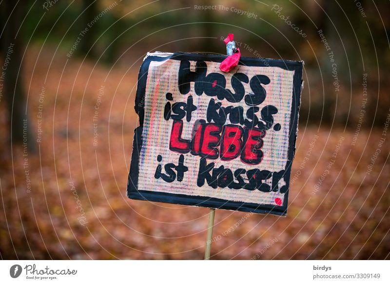 krass Jugendkultur Subkultur Punk Natur Herbst Park Wald Schriftzeichen Schilder & Markierungen Hinweisschild Warnschild Graffiti Liebe authentisch positiv