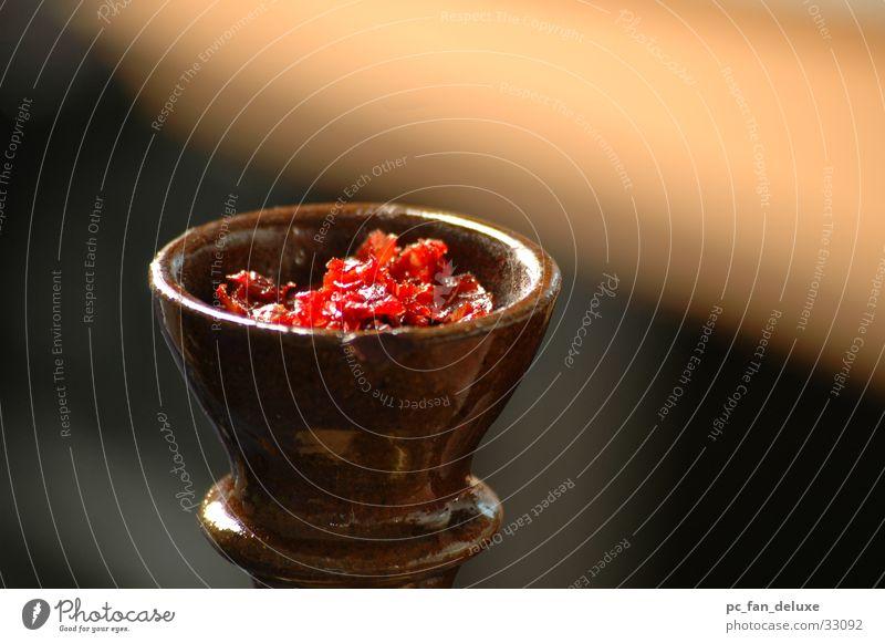 Shisha Köpfchen Wasserpfeife Tabak Freizeit & Hobby Rauchen Detailaufnahme aromatisch