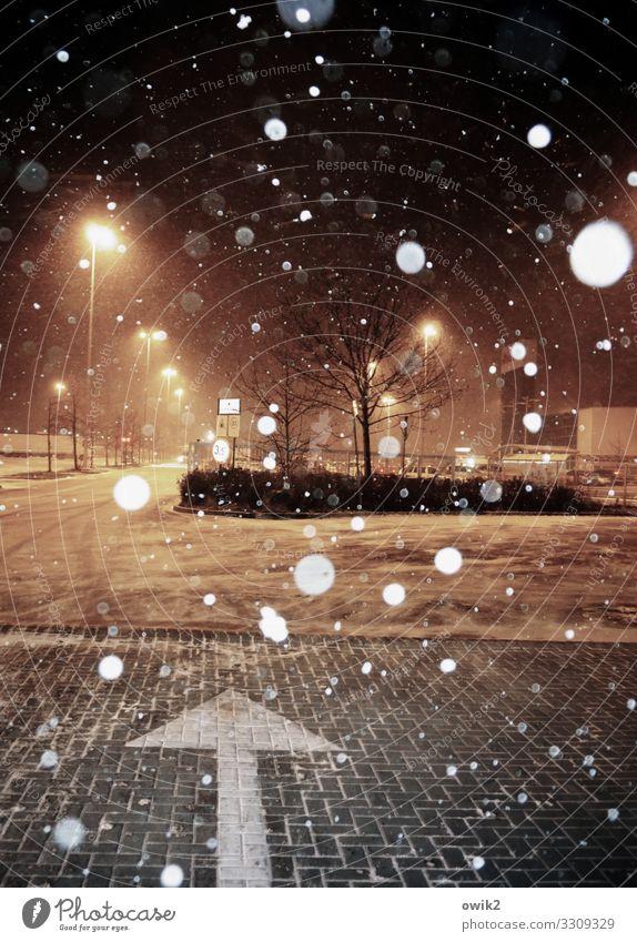 Schneeballerei Nachthimmel Winter Schneefall Baum Sträucher Polen Parkplatz Parkplatzbeleuchtung Straße Pfeil fallen leuchten dunkel Schneeflocke Supermarkt