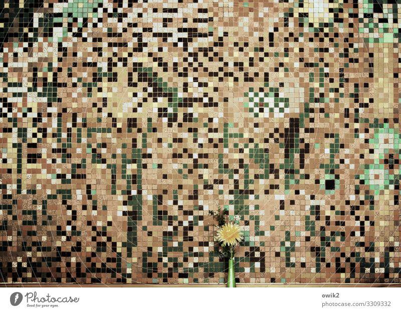Anschauungsmaterial grün Blume gelb Innenarchitektur Wand Kunst Mauer Stein braun grau Design Dekoration & Verzierung wild retro verrückt viele