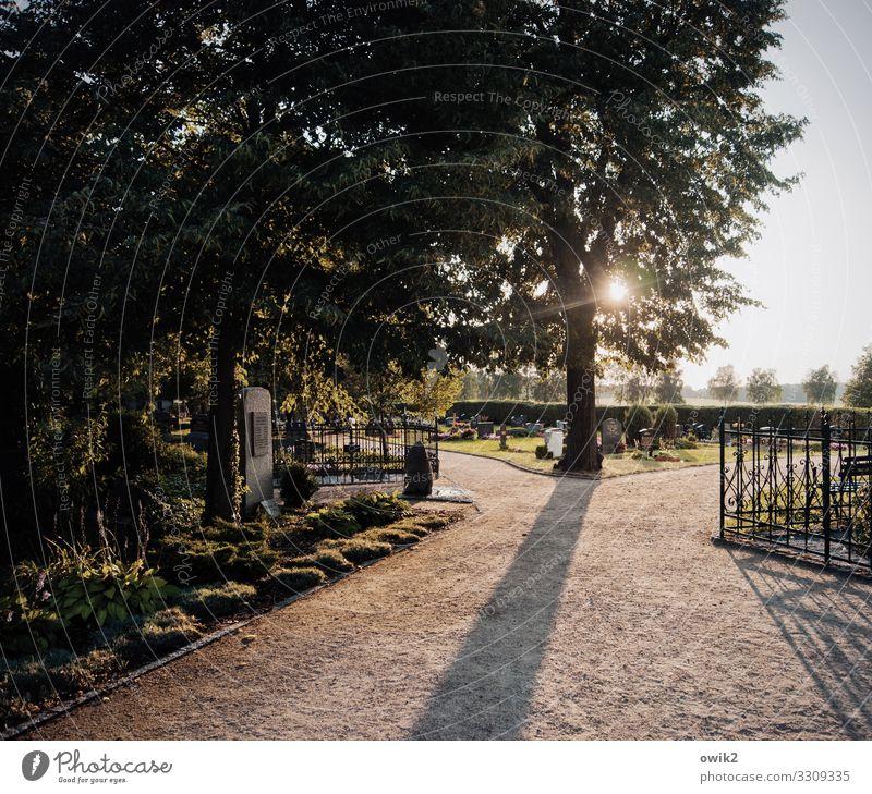Kirchhof Horizont Sonne Baum Gras Sträucher Wege & Pfade Friedhof Grab Hecke kiesbedeckt Schotterweg Kies Zaun Holz Metall leuchten trösten ruhig Hoffnung