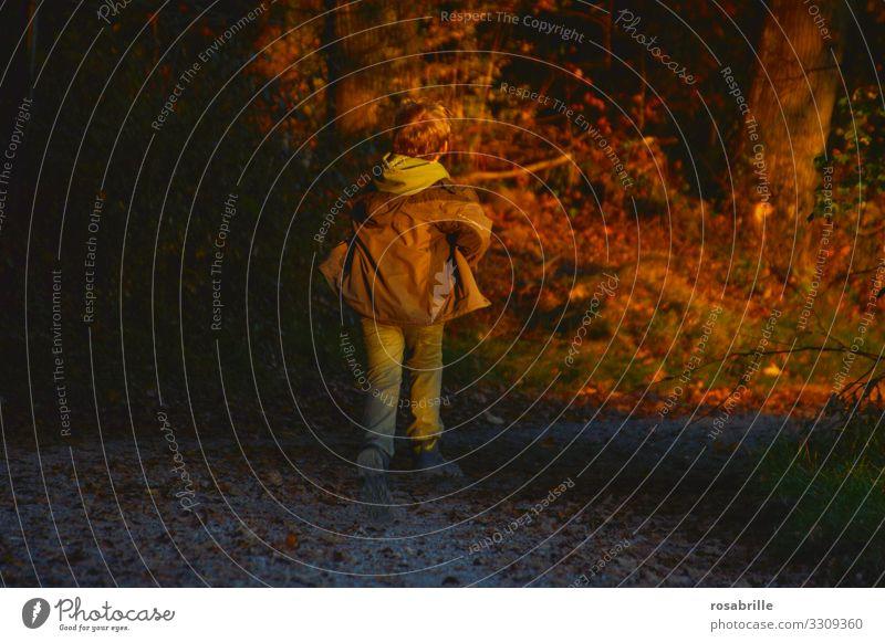 jetzt aber schnell   rennendes Kind im Herbst laufen beeilen Spaß Spiel spielen spielerisch Eile Abendlicht abends Sonnenuntergang Beleuchtung orange braun grün