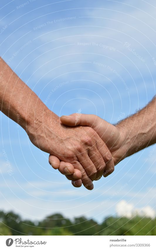Händedruck -Handschlag zweier Männerhände | Hautsache Sommer Handel Business Sitzung sprechen Mensch maskulin Mann Erwachsene 2 Himmel berühren Mut Tatkraft