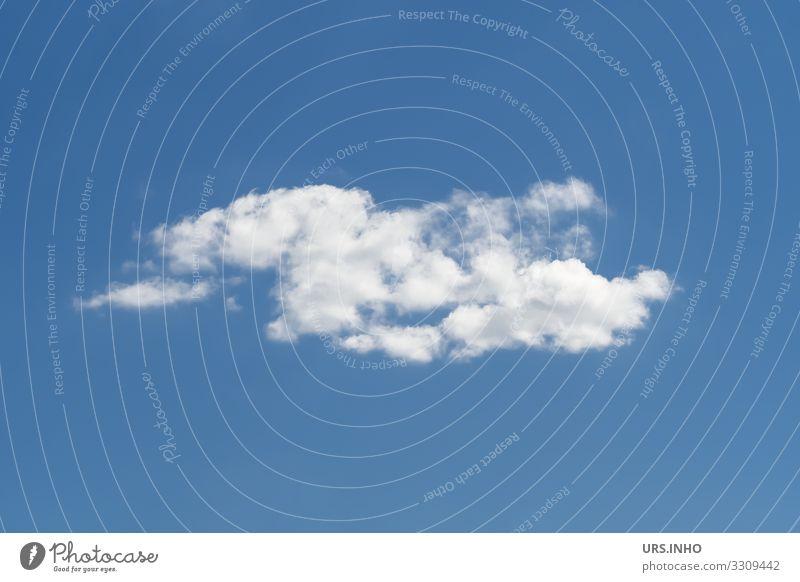 eine weiße Wolke vor blauem Himmel Urelemente Luft nur Himmel Wolken Klima Wetter Schönes Wetter Bewegung authentisch Sehnsucht Fernweh Einsamkeit