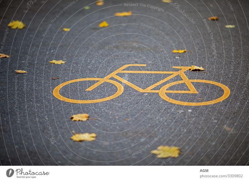 gelb und gelb auf der Straße Stadt Erholung Gesundheit Lifestyle Leben Umwelt Wege & Pfade Sport Freizeit & Hobby Verkehr Fahrrad Fahrradfahren Fitness Zeichen