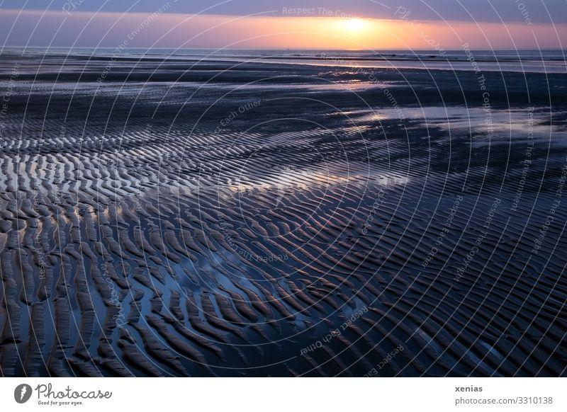 Sonnenuntergang am Strand auf Spiekeroog Ferien & Urlaub & Reisen Tourismus Sommerurlaub Meer Insel Umwelt Natur Landschaft Himmel Wolken Sonnenaufgang Klima