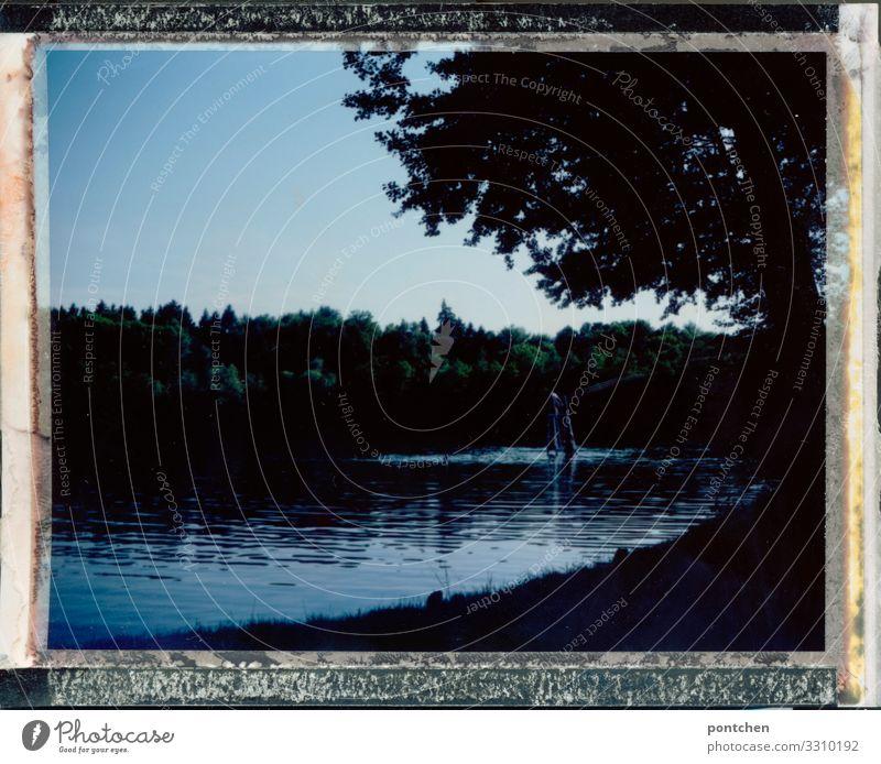 Idylle Himmel Natur Wasser Baum Erholung ruhig Wald dunkel Wiese See Stimmung Ausflug Freizeit & Hobby Seeufer Rahmen friedlich