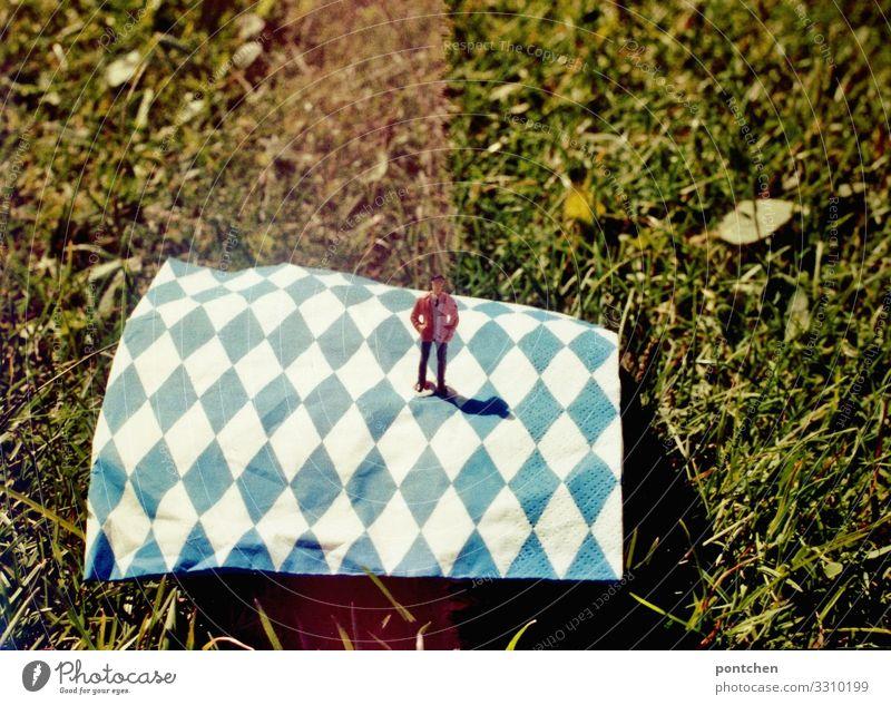Echter bayer Mensch Sommer Sonne Wiese Gras maskulin stehen Fahne Kitsch Figur analog Bayern bayerisch