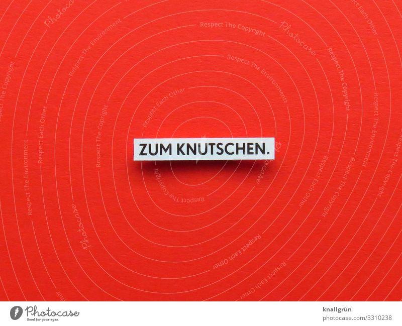 ZUM KNUTSCHEN. Schriftzeichen Schilder & Markierungen Kommunizieren Küssen rot schwarz weiß Gefühle Freude Glück Lebensfreude Begeisterung Liebe Stimmung