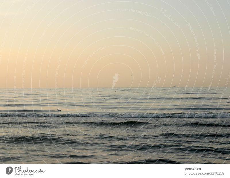 Warm Ferien & Urlaub & Reisen Sommer Sonne Meer ruhig Leben Freiheit Wasserfahrzeug Stimmung Wellen Insel authentisch Neugier Hoffnung Glaube Sommerurlaub