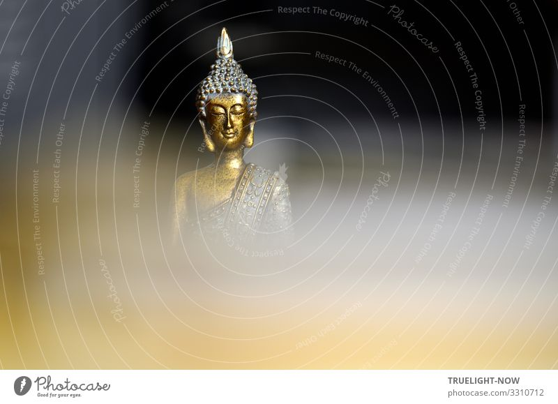 Aus der Dunkelheit und verschleierten Tiefe des Bewusstseins erhebt sich eine vergoldete Skulptur mit dem bekannt freundlich lächelnden Gesicht des Buddha
