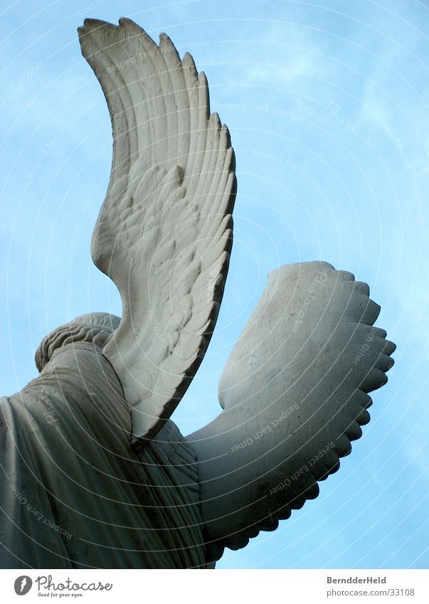 Engel von hinten Stein Rücken Flügel Statue Skulptur rückwärts