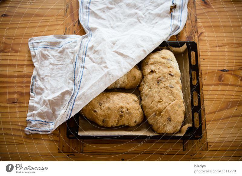 Stollen vor dem Backen Teigwaren Backwaren Brot Christstollen Ernährung Backblech Tisch Holztisch Metall Tuch Duft authentisch lecker positiv braun gelb weiß